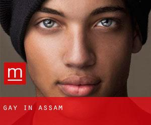 gay in Assam