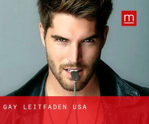 Gay leitfaden USA
